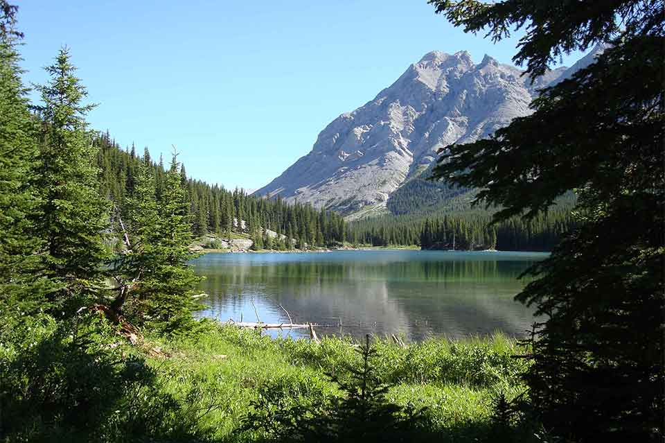 Bragg Creek, Elbow Falls, Moose Mountain helicopter tour